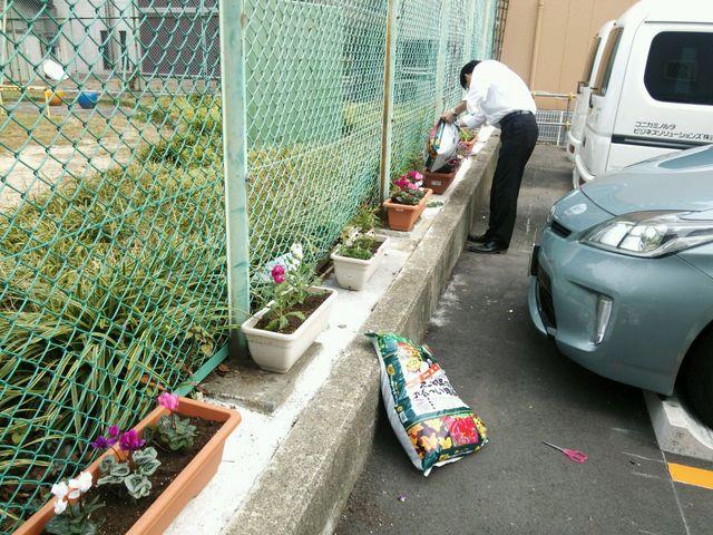 お花を植えました!